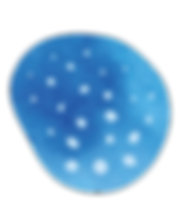 NS_logo_fin-4.png