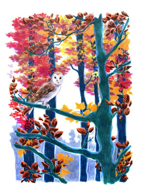 Chouette automne calendrier crayons de couleur