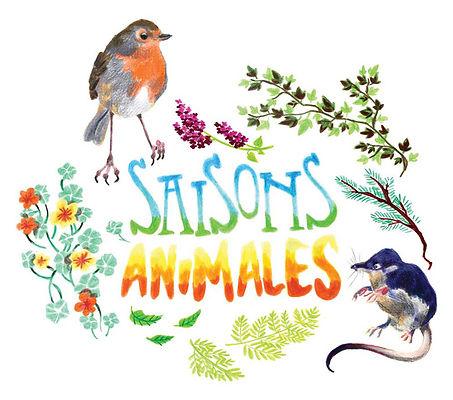 saisons animales illustrations crayons de couleur elsa b.
