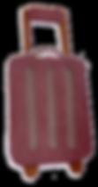 valise brune