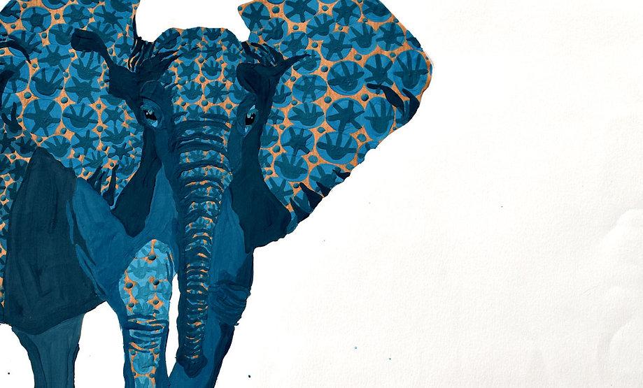 tête-elephant.jpg