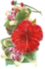 offrande balinaise indonésie hibiscus
