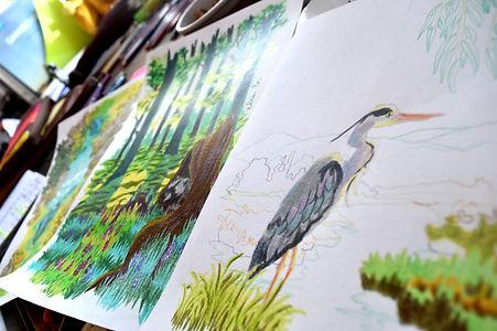 wip crayons de couleur elsa b. payasages héron et raton laveur