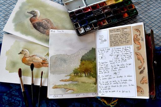 Leçon d'aquarelle avec TheoSchu