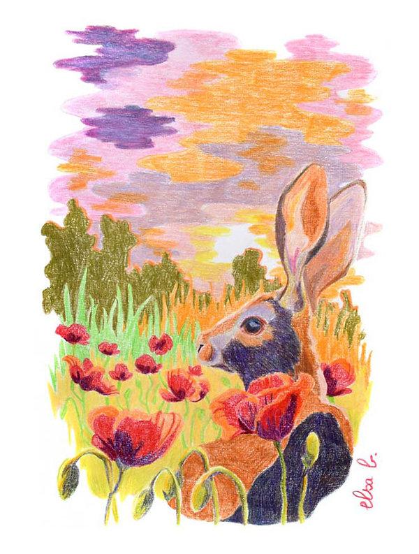crayons de couleur lièvre paysage