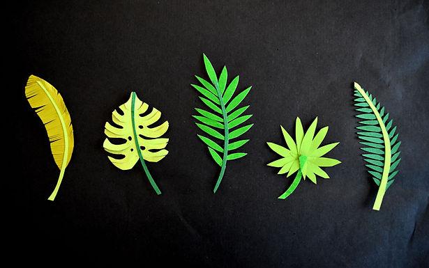 feuilles plantes éxotiques papier découpé