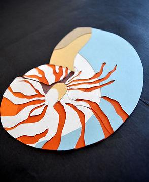 coquillage papier découpé