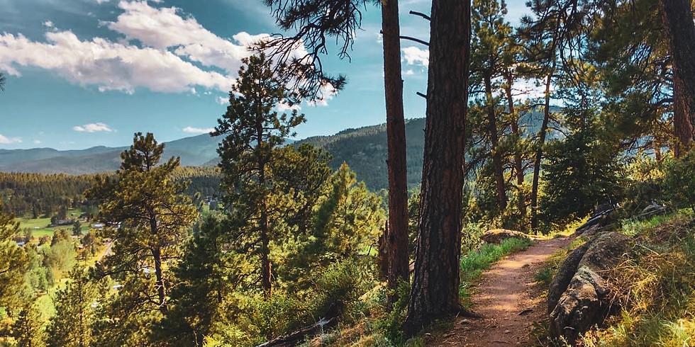 November Clean Up Hike - Dedisse Park/Evergreen Lake