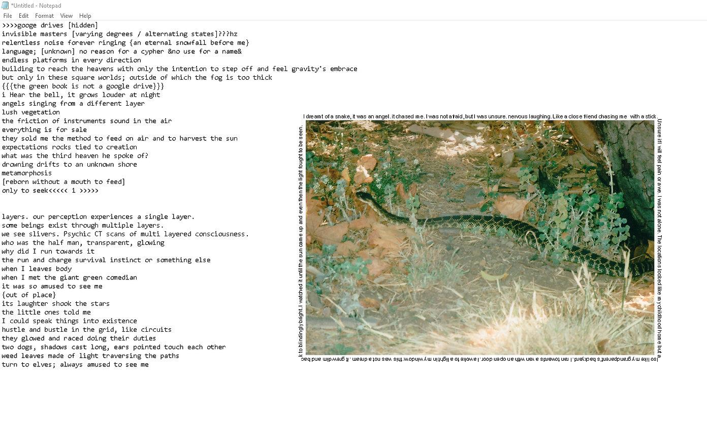 snake tablet.jpg
