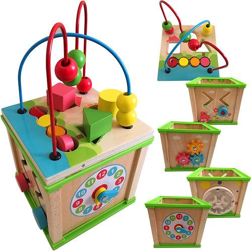 Multi Activity Wooden Cube