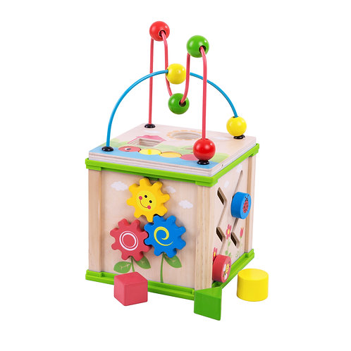 Multi Activity Wooden Cube