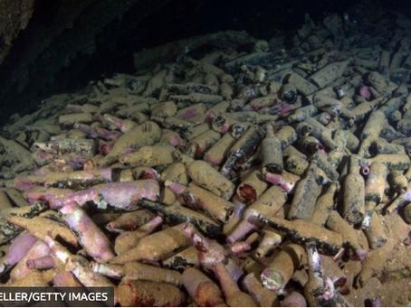 Leveduras cervejeiras encontradas em um navio afundado há 120 anos: como sobreviveram?