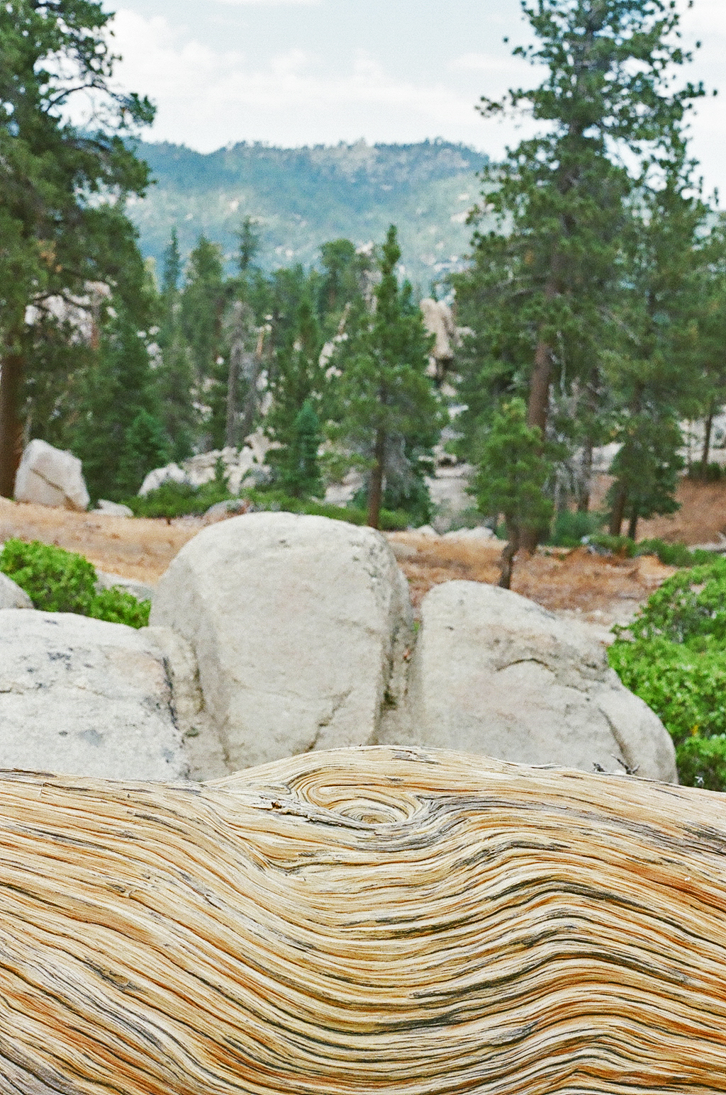 Wood Spiral - Big Bear Lake, CA