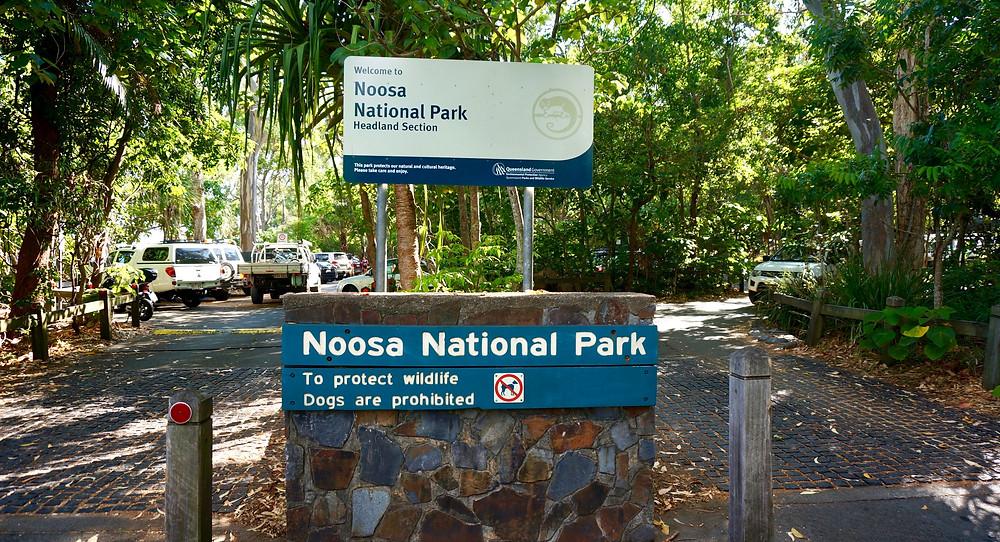 Car park for the Noosa National Park