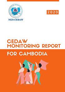 Monitoring Report 2020 Eng V.jpg