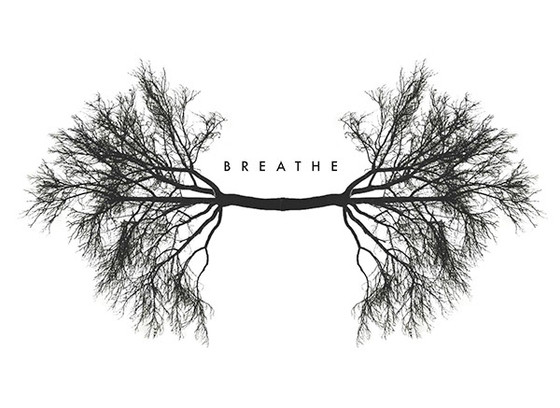 Cultivating The Conscious Breath
