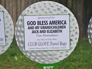 golf ball - club glove.JPG