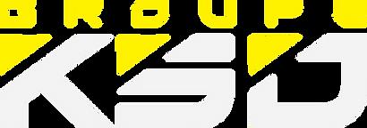 Sitgeweb logo jaune gradient 7.png