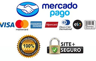 selo-mercado-pago_large_edited.jpg