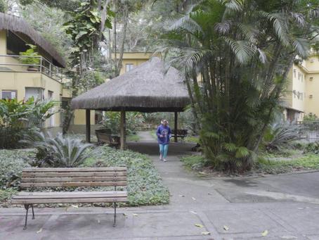 Ações realizadas pela Terapia Ocupacional na Clínica da Gávea