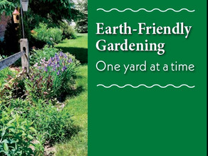 Just in Time for Pollinator Week – New Earth-Friendly Gardening Booklet Now Available