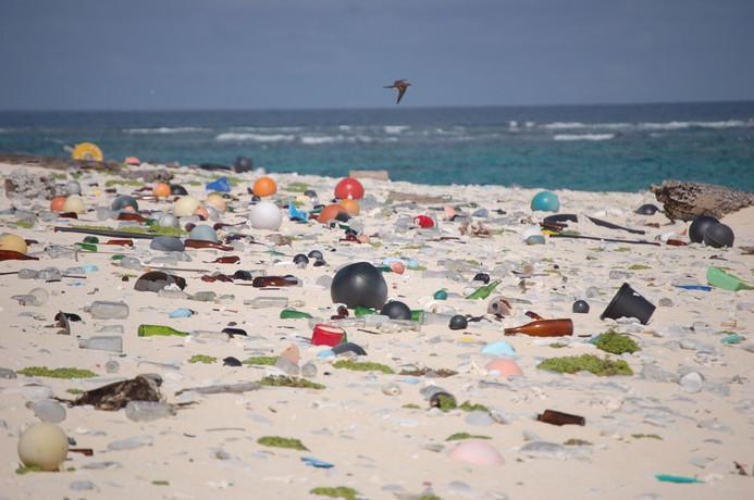 Beach_strewn_with_plastic_debris_(808050