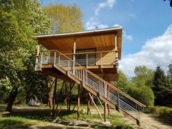 escalier maison dans les arbres