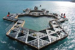 structure flottante tractée