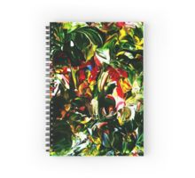 spiral notebook, spiral spine journal, sketchbook,  (3)