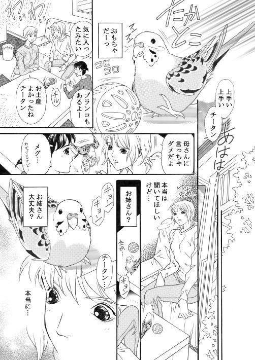 漫画/青いお鼻のチータン19