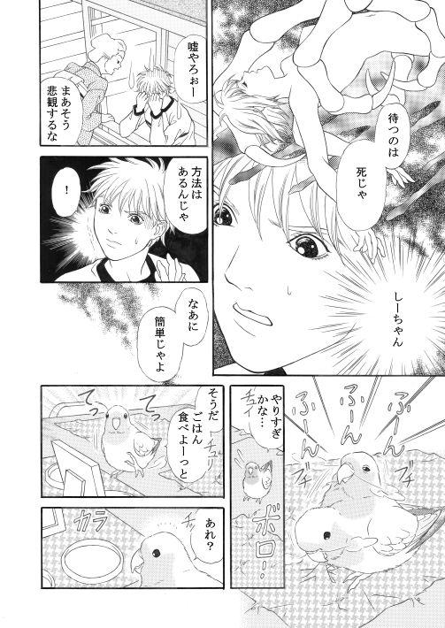 漫画/楽園の小鳥 18