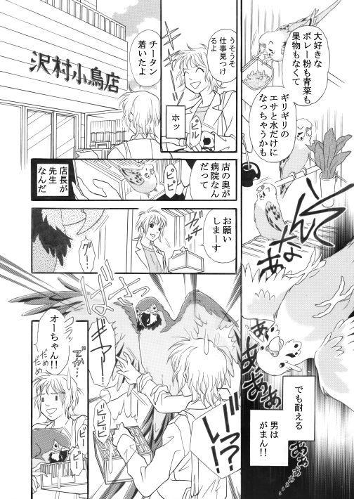 漫画/青いお鼻のチータン8