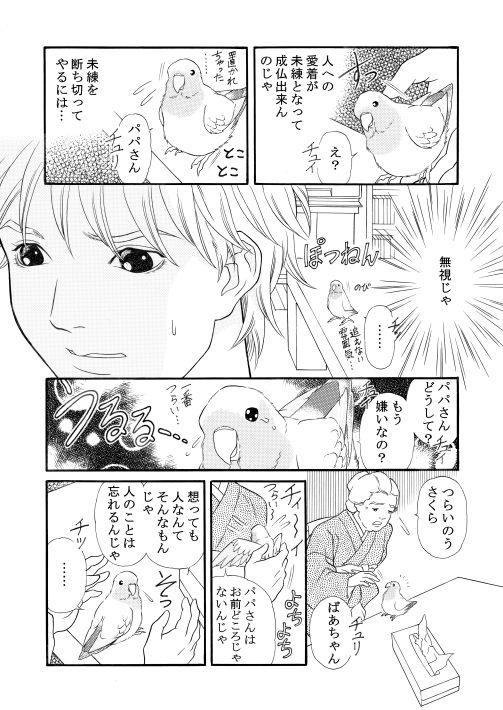 漫画/楽園の小鳥 20