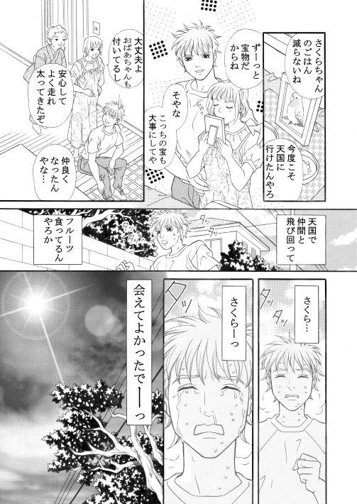 漫画/楽園の小鳥 31