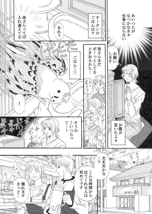 漫画/青いお鼻のチータン15