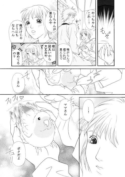 漫画/楽園の小鳥 27