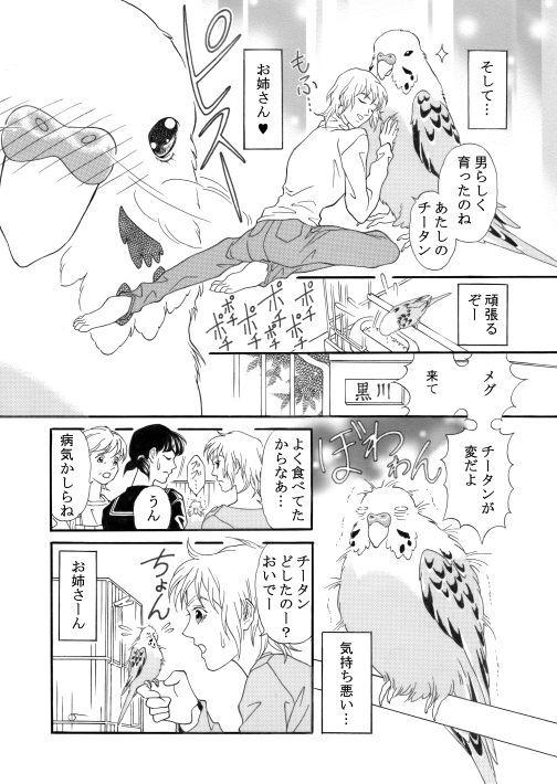 漫画/青いお鼻のチータン5