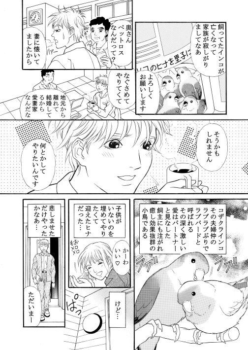 漫画/楽園の小鳥 6