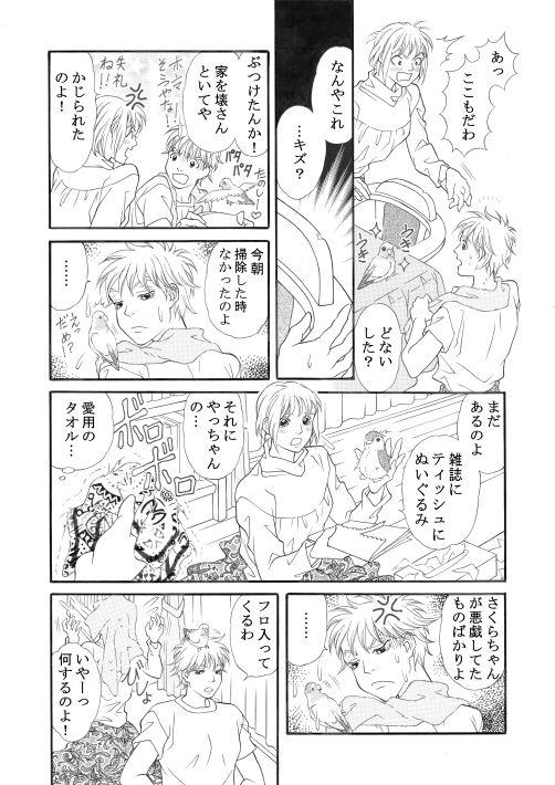漫画/楽園の小鳥 12