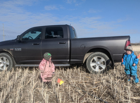 The Nielsen Seeds research team is in the field this am prepping plot sites!