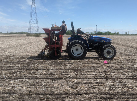 Our Soybean & Corn Plots are Planted! Stayed Tuned for Updates.