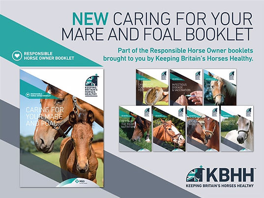 Equine Reproductive Services