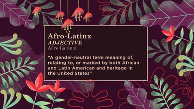 Afro-Latinx Explainer