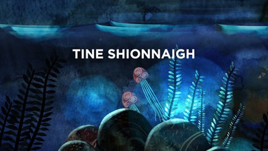 Tine Shionnaigh