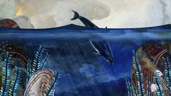 Dolphins_3.jpg