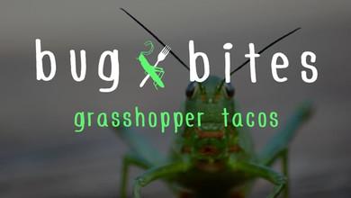 Big Bites: Grasshopper Tacos