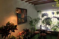 eclectic indoor garden