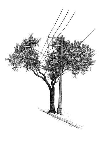 Múltiplos-Árvore nª4.jpg