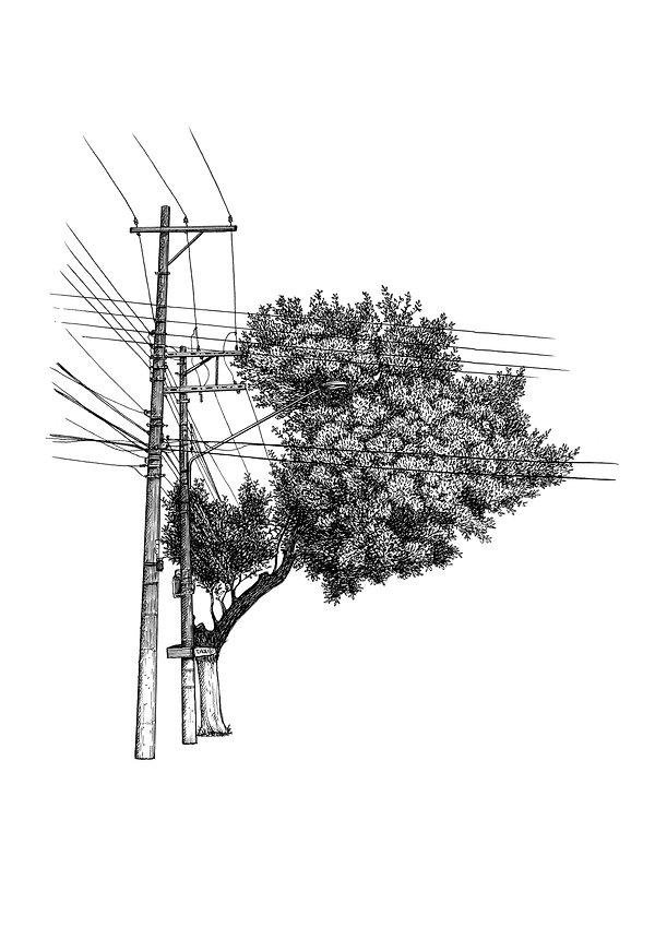 Múltiplos-Árvore nª7.jpg