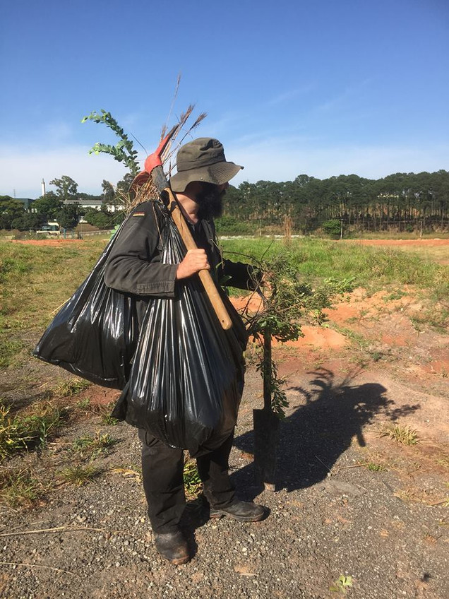 Coletando plantas para os Cerrados Infin